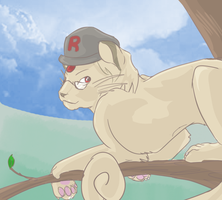 nate persian by Appletail