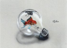 time lapse fish in the lamp by personnedali