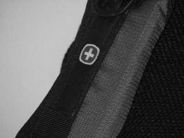 Swiss Shoulder Strap by RosalineStock