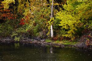 Autumn Pond by S-H-Photography