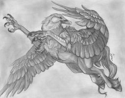Shade my Hippogriff by Doctor-Axel