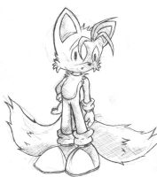 omg tails by logan-bp