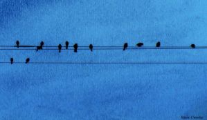 Line of birds by Ranae490