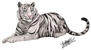 White Bengal Tiger by CoolBlueSonic