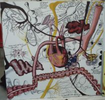 The Biology Lesson by Manthorpe
