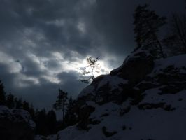 tree of light by Setril