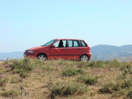 fiat punto by d1day
