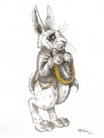 The White Rabbit by hayleymerrington
