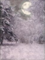 Free premade background winter by jellybean2009