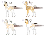 Ballator Foal Concepts by IndigoCharger