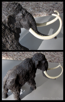 Safari Ltd. Carnegie Collection - Woolly Mammoth 2 by The-Toy-Chest