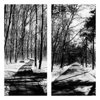 different roads by PsycheAnamnesis