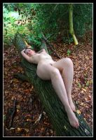 Fallen Tree by Artistic-Nudes-Club