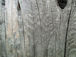 Wood Texture 02 by Aimi-Stock