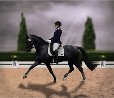 First dance- BTs Autumn spectacular dressage entry by tichwin
