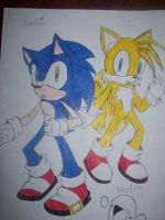 Sonic and Tails by chaobreeder13