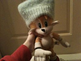 Tails is ready for winter by HamtaroDramaClass