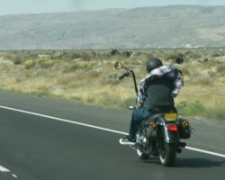 Another Easy Rider by finhead4ever