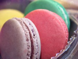Macarons by Speechlessly