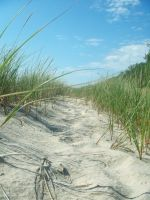 dunes by beth4328