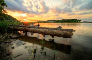 Log-beach-hdr by joelht74