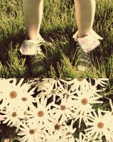 Daisy Chains and Sun Rays. by sleeping-alone