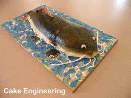 Catfish Cake by cake-engineering