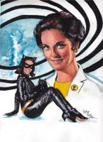 The Incredible Lee Meriwether by smjblessing