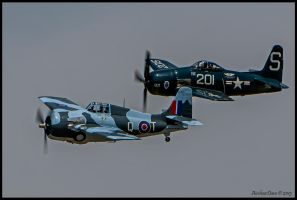 Wildcat N5833 / Bearcat N7825C by AirshowDave