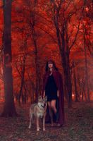 Red Forest by VXLPhotography
