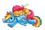 Sketch - Snoozing Scoots by sophiecabra