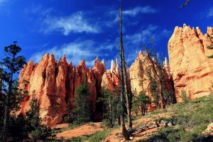 Bryce Canyon by barbko