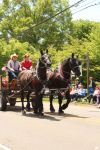 Draft Horses and Wagon II by Stock-Wulf