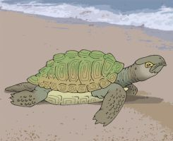 Neocene - Algal Turtle by Pristichampsus