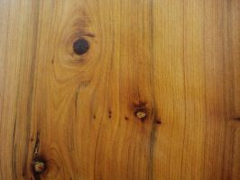 Juniper Wood texture 1 by Mr-Stock
