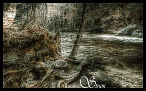 Deeply Rooted by Ghost247