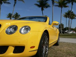 Yellow car with palm trees by 3Rockstar3