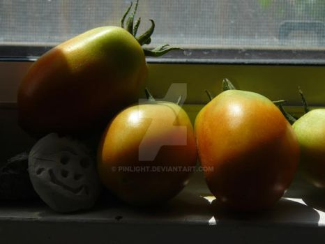 Tomatoes on the Ledge by pinlight
