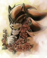 Shadow by LeonS-7