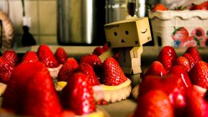 strawberry fields danbo by InV4d3r