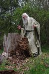 Wizard Hollow 2013-13-04 47 by skydancer-stock