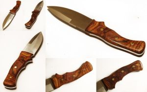 Cocobolo Blade by theon07