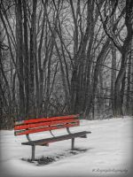 red bench by wroquephotography