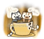 Neko Atsume_Two NEW Cafe Kitties_ by kiraradaisuki