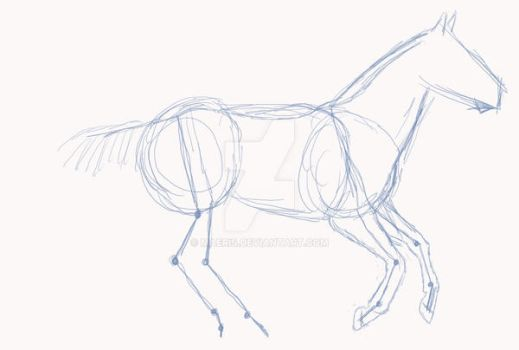 How I draw horses by Maeris