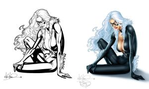 Black Cat - Before and After by StacyRaven