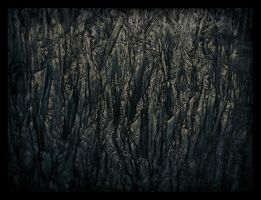 spooky forest by feldrand