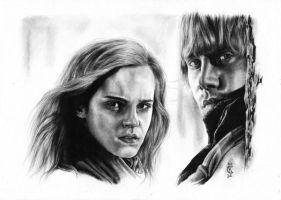 Ron and Hermione by CKArtpage