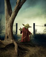 Jedi Master Yoda by Splat-Shot