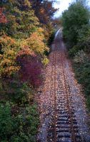 Autumn on the Tracks - 2008 by Foozma73